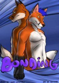Cover Bonding